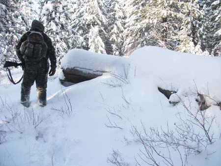 Snowy Elk Hunt Picture